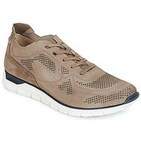 鞋子 男士 球鞋基本款 André GUIDO 灰褐色