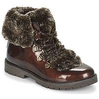 鞋子 女孩 短筒靴 Citrouille et Compagnie JITTER 棕色