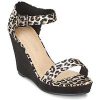 鞋子 女士 凉鞋 Moony Mood IVONGA 黑色 / Leopard