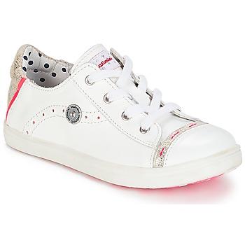 鞋子 女孩 球鞋基本款 Catimini PANDA Vte / 白色 / 金星