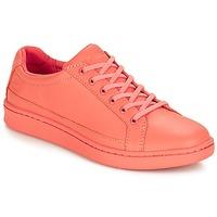 鞋子 女士 球鞋基本款 Timberland 添柏岚 San Francisco Flavor Oxford 橙色