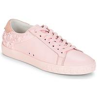 鞋子 女士 球鞋基本款 Ash 艾熙 DAZED 玫瑰色