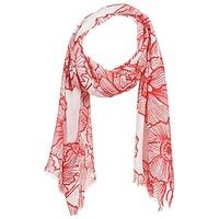 紡織配件 女士 圍巾/披肩 André ROXANE 紅色
