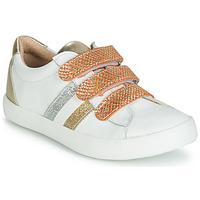 鞋子 女孩 球鞋基本款 GBB MADO 白色 / 金色